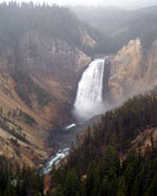 Yellowstone Falls - Click to view details