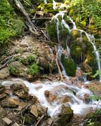 Misty Mountain Stream - Click to view details